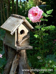 rustic bird house on stump