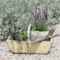 Lovely afternoon in the garden. Planting. #countrystyle #french #frenchantiques #frenchcountry #garden #trug #basket #frenchgardenhousestyle
