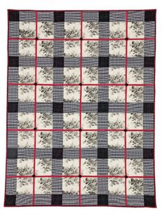 Holly Holderman designed this quilt by combining a large-scale print with a dot and a check. This simple, elegant quilt is easily adaptable to a variety of styles and is a perfect beginner project.