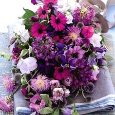Purple and violet flower theme