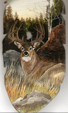 One of our best selling Deer feathers. Most hunters love the set. Pride and promise Feather Painting, Feather Art, Tole Painting, Antler Art, Deer Art, Country Paintings, Pallet Art, Wildlife Art, Native American Art