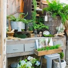 Sweet Salvage (@sweetsalvage) • Instagram photos and videos Merchandising Displays, The 4, Special Guest, Cozy House, Vintage Antiques, Potting Benches, Photo And Video, Farmers, Sweet