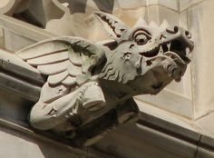 Washington National Cathedral Gargoyles: Bovine Dragon (34) in Washington, D.C. by Unknown, Unknown