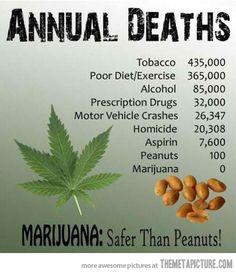 Marijuana: Safer than Peanuts!