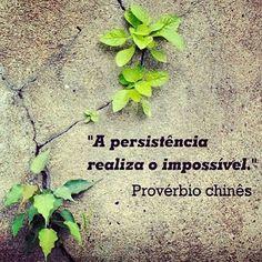 A persistência realiza o impossível! #sucesso #foco #trabalho #job #muitomaisfeliz #pbmmn
