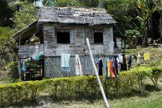 typical nipa house