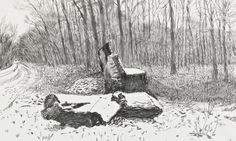 David Hockney's Vandalized Totem in Snow, 5 December Photograph: © David Hockney, courtesy Annely Juda Fine Art, London David Hockney Artwork, Spring Drawing, Nature Sketch, Landscape Drawings, Landscape Art, Wood Engraving, Doodle Drawings, Famous Artists, The Guardian