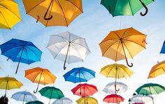 Best Umbrella, Umbrella Art, Umbrella Tattoo, Umbrella Painting, Whatsapp Wallpaper, Hd Wallpaper, Green Wallpaper, Animal Wallpaper, Computer Wallpaper