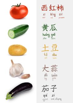 Double study. Drawing veggies from photos and their translation in Mandarin.