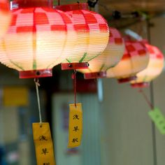 by James Justin Chinese Paper Lanterns, Traditional Lanterns, Vintage Lanterns, How To Make Lanterns, Chinoiserie, All The Colors, Japanese, Lights, Charlie Chan