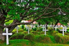A church cemetery at Hofn, southern Iceland. bury my urn here please :)