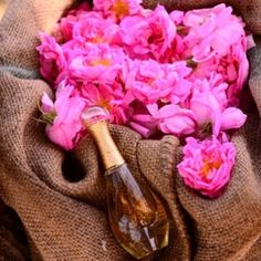 The Future is Gold! Credit: photoroomz #Diorvalley #Dior #Jadore #JadoreDior #Flowers #Roses #Pink