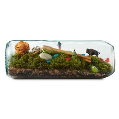 this is really neat. it's just made from a repurposed wine bottle and some moss and dirt. bet i could make this...
