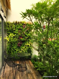 Enhance the look of your balcony through outstanding landscape architecture with Singapore Landscape Design. We also work as a design consultancy, helping customers fulfil their passion for Balcony plants Singapore. Hire professionals to append visual effect to your home.