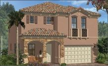 The Freeport at Silver Palms Community