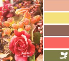 Love these colors. My current living room is painted that green color, so I need to try and bring in a lot of the coral, plum, & yellow.