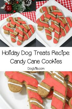 hypoallergenic dog Looking for fun Christmas and hypoallergenic dog treats Check out this adorable candy cane holiday dog treats recipe! Its easy to make, and your pup will love it! Dog Cookie Recipes, Easy Dog Treat Recipes, Dog Biscuit Recipes, Dog Food Recipes, Puppy Treats, Diy Dog Treats, Homemade Dog Treats, Healthy Dog Treats, Holiday Dog Treat Recipe
