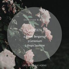 Favorite Oily Recipes — Living Life By The Horns Financial Peace, Diffuser Blends, Geraniums, Horns, Garden, Life, Horn, Garten, Lawn And Garden