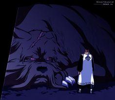 Bleach Anime Photo: *Sajin Komamura*