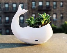 Whale planter, 3D printed gift for friends and home decor, ocean, gardening, cute, adorable, Zoo, flower, white
