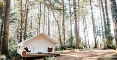 Classic Tent  in New Mendocino Campground, California | A luxury camping experience in the coastal woods of Mendocino. Enjoy all the romance of camping without the hassle of...