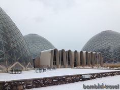 Mitchell Park Conservatory - WI | Bambini Travel