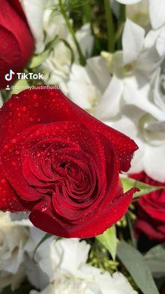 Floral Wedding, Wedding Bouquets, Casket Sprays, Sympathy Flowers, Rancho Cucamonga, Flash Art, Unique Flowers, Flower Designs, Red Roses