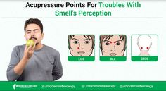 You may apply suitable acupressure points such as LI20 and BL2 for troubles with smell perception. #Modernreflexology #Reflexology #acupressure #smell #nosmell #Health Acupressure Points, Reflexology, Perception, Family Guy, Coding, How To Apply, Fictional Characters, Health, Health Care