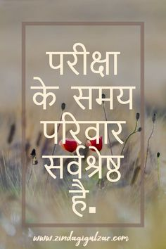 Family Status In Hindi Happy Family Quotes, Bare Men, Take A Hint, Family Meaning, Status Hindi, Human Connection, Family Love, Hindi Quotes, Love You