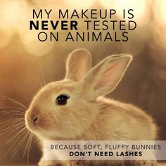 www.youniqueproducts.com/Natacha Becker We love our fur babies so none of youniques make up is tested on animals