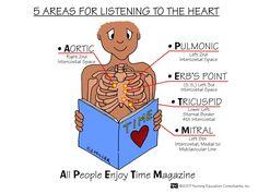 auscultate heart sounds landmarks | Nursing 361  Tinjum  Flashcards  Cardiac Assessment | StudyBlue