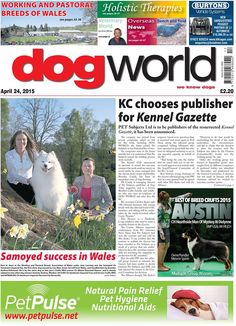 This week's Dog World newspaper (April 24) #dogs #DogWorld #newspaper #news #dogshows #dogshowing