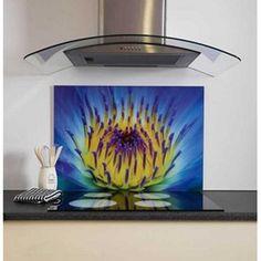 Kitchen Remodel Designs: Funky Kitchen Splashbacks