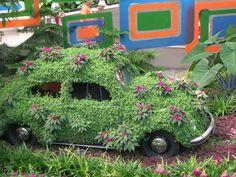 Volkswagon Garden