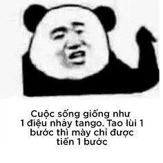 Chinese Meme, Panda Background, Interesting Meme, Fujoshi, Haha, Funny Memes, Songs, Humor, Ouat Funny Memes