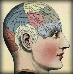 Frenologica-mente