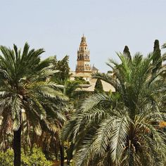 Cordoba in Spain is best known for La Mezquita the big mosque. It's a site of the UNESCO World Heritage!
