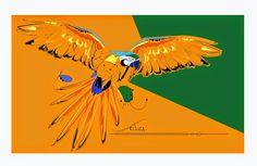 Arara Canindé - Ilustração http://www.souzaarte.com/#!/cnfd