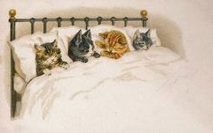 four in bed