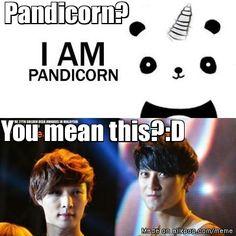 Pandicorn xD ... Lay and Tao #EXO
