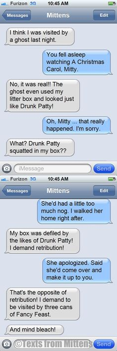 NEW daily Texts from Mittens: The Drunk Patty Used My Litter Box Edition