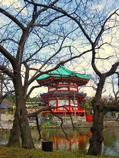 #Ueno Park in #Tokyo, #Japan  For more pics https://www.facebook.com/lilyrianitravelholic