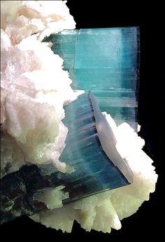 Tourmaline var. Indicolite crystals with Topaz and Quartz on Albite -- From the Shigar Valley, Skardu District, Baltistan, Gilgit-Baltistan, Northern Areas of Pakistan