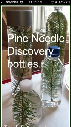 http://media-cache-ak1.pinimg.com/originals/9b/13/46/9b1346ad52749c943e1f90d203435257.jpg  Winter sensory bottle add white glitter