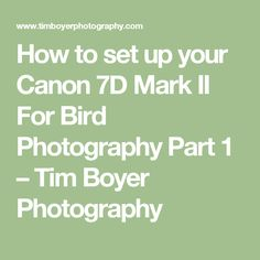 How to set up your Canon 7D Mark II For Bird Photography Part 1 – Tim Boyer Photography