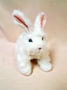 Fur Real Hop n' cuddle Bunny Hops & makes sniffing & nibbling sounds.