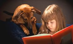 Research has highlighted the importance of providing ongoing opportunities for children to read aloud in class to teachers and friends, and at home to parents, siblings and even pets.