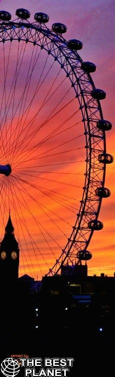 London landmarks in sunset lights I'm not a fan of confined spaces but I would deal with that to be able to see London from the London Eye. On a clear day the city must look so beautiful. London Eye, Beautiful Sunset, Beautiful World, Beautiful Places, The Places Youll Go, Places To Visit, London Landmarks, London Attractions, London England