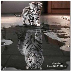 Diy 5d diamant schilderen kruissteek vierkante mozaïek diamant borduurwerk katten tigers handwerken patronen strass schilderijen vs292