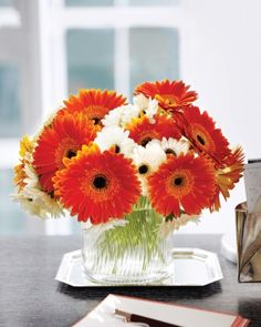 Fall:  Gerbera Daisies    In this arrangement, one color is the star, the other is the costar. Gerbera daisies are top-heavy, so here Kevin Sharkey used floral tape to make a grid across the top of the vase to keep them in place. Each opening holds a few stems.
